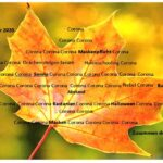 Poesie im Herbst