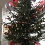 Denn ein Weihnachtsbaum zu sein: Das ist fein…